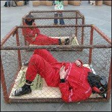 Guantanamo...K.O. ! dans conflits 0amo3