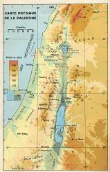 0aaapl5 dans Palestiniens