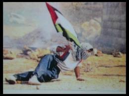 0a1ap2 Palestine - ONU - Israël - Justice - Peuples dans conflits
